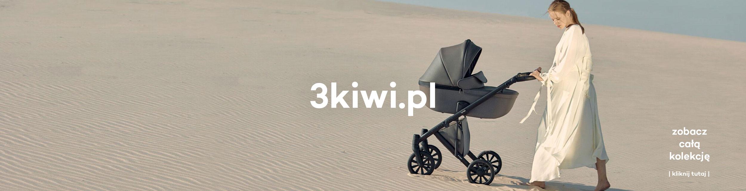 Polski Wózek Anex e/Type etype